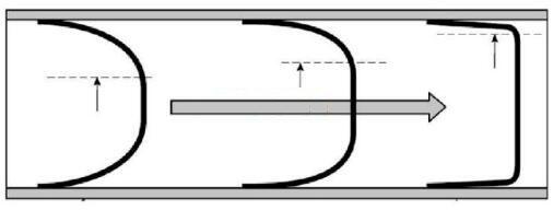 不同流态下的有效横截面积